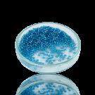 Rocailles borduurkralen glas 8/0 blauw silverlined transparant