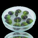 Glaskralen 12mm groen paars rond plat