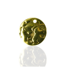 hangers muntje 14mm goud rond metaal