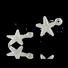 Hele mooie zee ster bedeltjes verzilverd